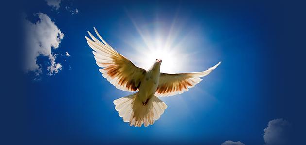 تعمید روح القدس چیست؟ عملکرد و فواید دعا به زبانها چیست؟